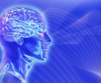 Возможно ли создание искусственного мозга человека через 10 лет?